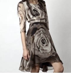 Sara Phillips Amy Rose Silk Dress